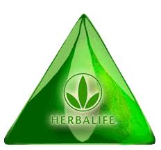 mlm herbalife opportunity