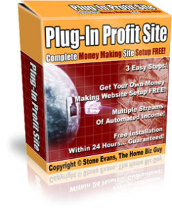 what is plug in profit site