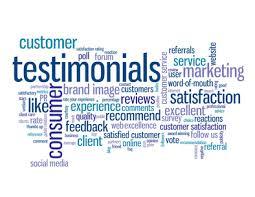 plug in profit site testimonial