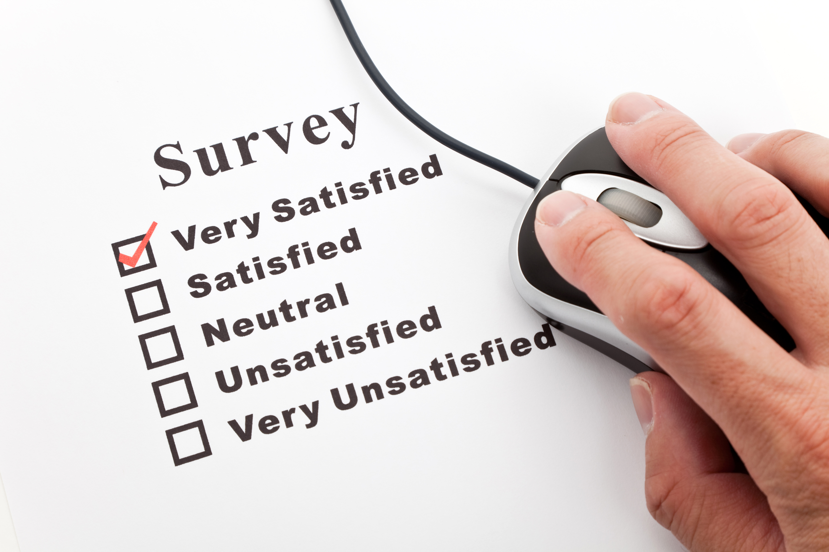 paid free survey internet registration